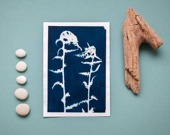"""Original cyanotype """"Young fronds"""" on Hahnemühle sketch paper in DIN A5 format"""