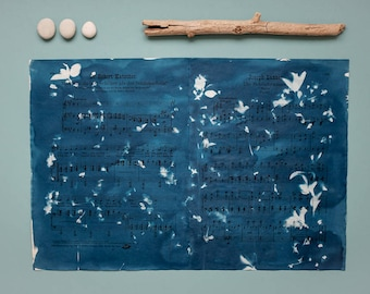 """Original cyanotype """"Sour cherry"""" on old, double-sided sheets of music"""