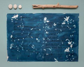 """Original Cyanotypie """"Sauerkirsche"""" auf alten, doppelseitigen Notenblättern"""