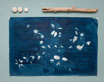 """Original cyanotype """"Serviceberry"""" on old, double-sided sheets of music"""