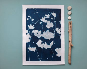 """Original cyanotype """"Wild hop tendrils"""" on bulky drawing paper in DIN A3 format"""