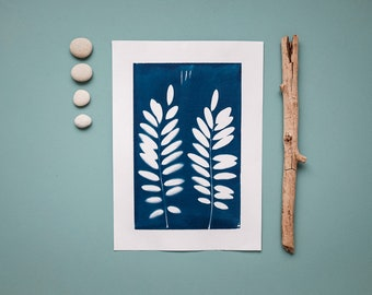 """Original cyanotype """"Black locust leaves"""" on bulky drawing paper in DIN A4 format"""