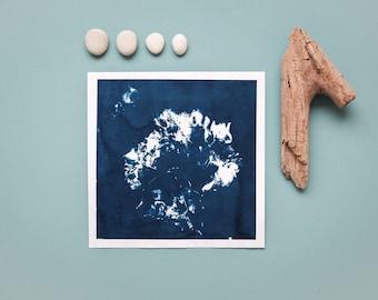 """Original Cyanotypie """"Hortensienblütendolde"""" auf Hahnemühle Skizzenpapier im quadratischen Format (21 x 21 cm)"""