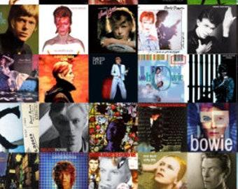 Knitting Project Bag, Bowie drawstring bag, Sock bag, Drawstring Bag, Gift Bag, Yarn Storage bag, Cosmetic bag, David Bowie