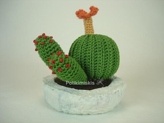 Kakteen Kaktus Pflanze Amigurumi Pflanze Topf Mit Pappmaché Etsy
