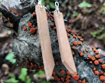 Leather Strip Earrings