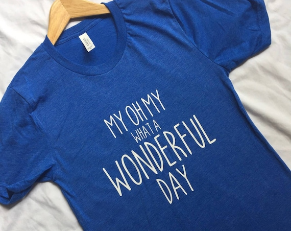 My Oh My What A Wonderful Day Shirt / Splash Mountain / Disney Shirt / Adult Disney Shirt/Zip A Dee Doo Dah/Vacation/Gift Under 30/Matching