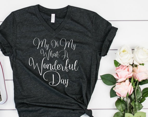 My Oh My What A Wonderful Day V-Neck Shirt / Splash Mountain Shirt / Disney Shirt for Women / Disney Shirt/Zip A Dee Doo Dah/Disney Gift