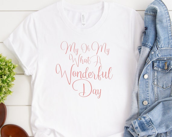 My Oh My What A Wonderful Day Crew Neck Shirt / Splash Mountain Shirt / Disney Shirt / Disney Shirt for Women /Zip A Dee Doo Dah/Disney Gift