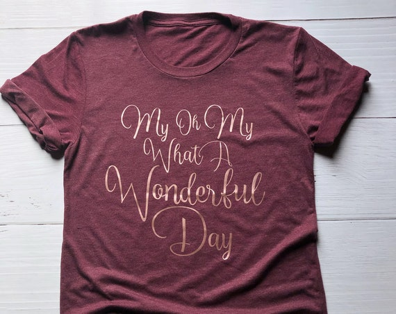 My Oh My What A Wonderful Day Shirt / Splash Mountain Shirt / Disney Shirt / Disney Shirt for Women /Zip A Dee Doo Dah/Disney Gift Under 30