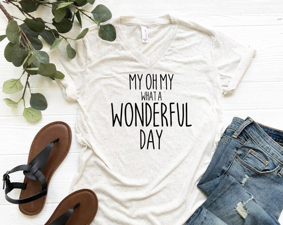 My Oh My What A Wonderful Day V-Neck Shirt / Splash Mountain / Disney Shirt Women / Disney Shirt Men / Disney Gift / Zip A Dee Doo Dah