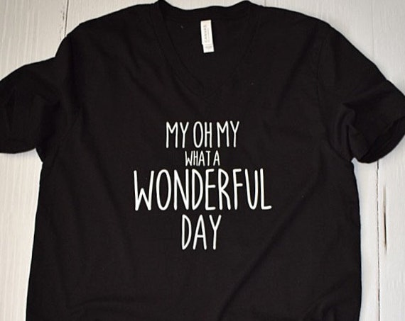 My Oh My What A Wonderful Day - Clearance Shirt / Splash Mountain / Disney Mountain/ Disney Shirt / Disney Vacation /Disneyland/Disney World