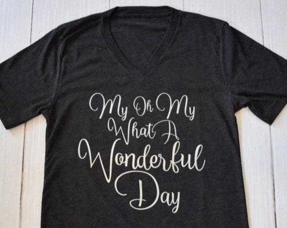 My Oh My What A Wonderful Day Shirt / Splash Mountain Shirt / Disney Shirt for Women / Disney Shirt/Zip A Dee Doo Dah/Disney Gift Under 30