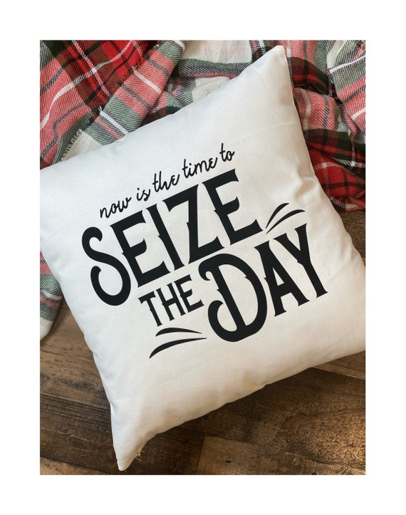 Seize The Day Throw Pillow Cover / Pillowcase / Sham / Gift / Newsies / King of New York / Broadway Disney / Home Decor /Living Room/Bedroom