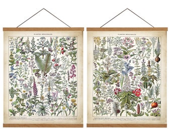 Medicinal Art Prints Set of 2. Vintage Medicinal Prints. Medicinal Plants Art. Vintage Botanical Wall Decor. Botanical Art. Botanical Prints