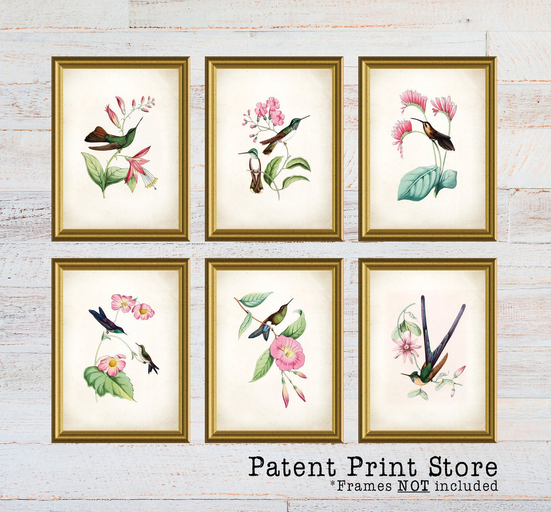 Hummingbird Art Prints Print Bedroom Bird Dining Room Wall Farmhouse Decor 136