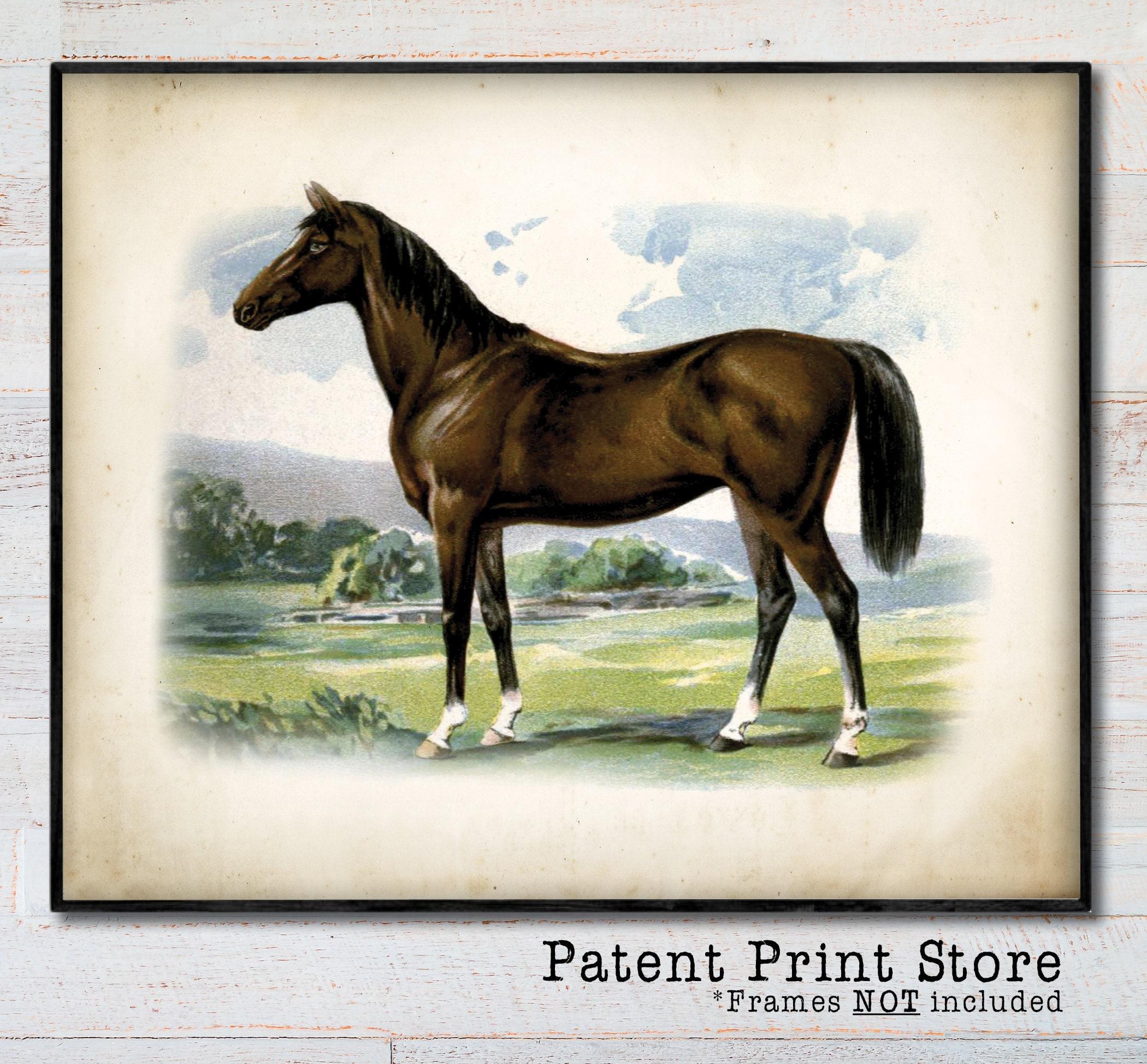 Horse Art Horse Print Horse Artwork Horse Art Print Horse Art