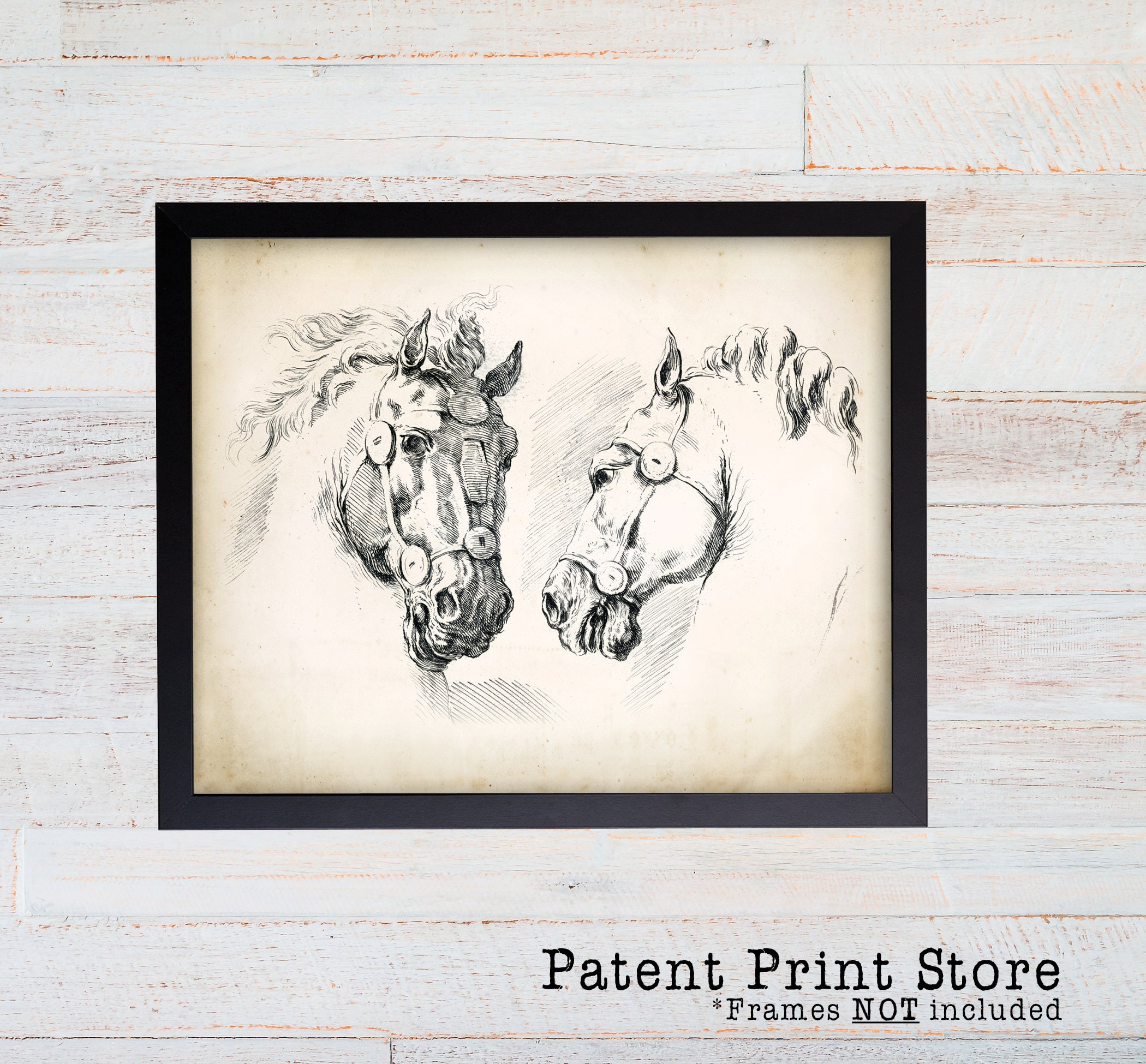 Vintage Horse Print Art Antique Equestrian Prints Dining Room Living Natural History Decor 097