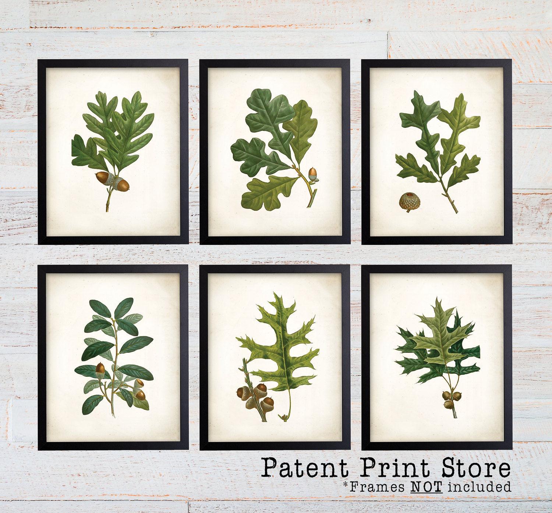 Oak Leaf Botanical Art Prints. Leaf Print. Leaf Art. Botanical Print. Kitchen  Art Prints. Dining. Botanical Wall Art. Farmhouse Decor. 128