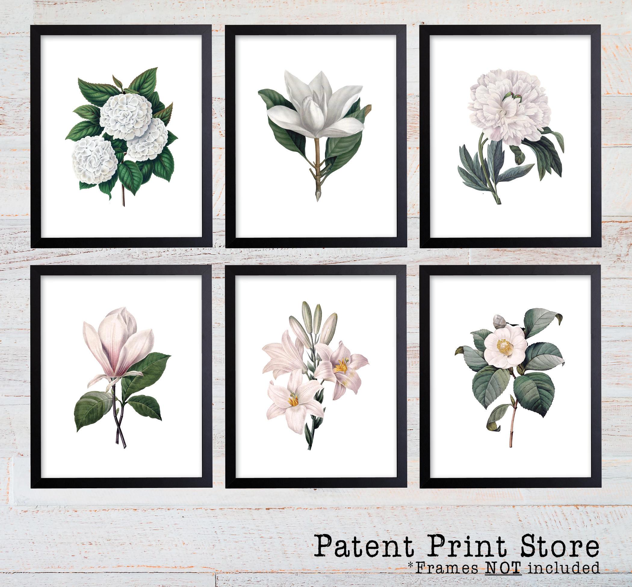 White Botanical Art Prints White Flower Prints Flower Wall Etsy