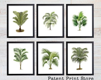 Palm Tree Print Set. Palm Tree Art. Botanical Prints. Wall Art. Palm Tree Wall Art. Nautical Art. Botanical Print Set. Beach House Decor. 11