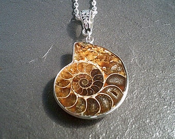 Ammonite Fossil Shell Necklace, Real Ammonite Necklace, Ammonite Pendant Silver Necklace, Nautical Necklace Jewelry, Marine Jewelry UK