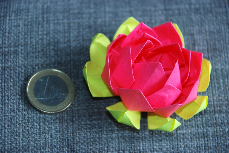 5 Creative Multicolor Paper Origami Lotus Flowers Home Decor