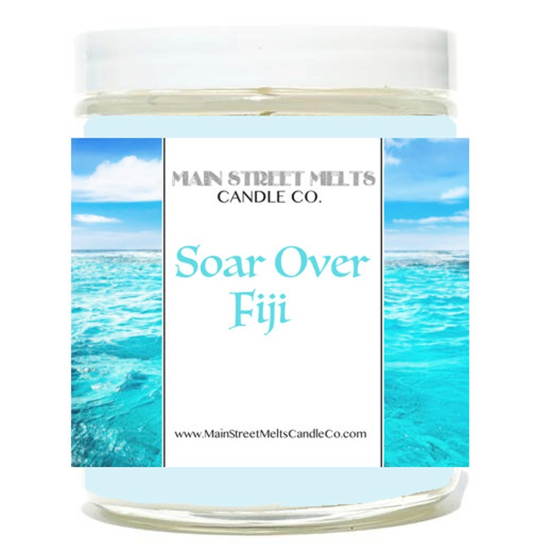 Magic Themed Theme Park scent Epcot Soarin/' Ocean SOAR OVER FIJI Disney Inspired Candle 9oz Jar Natural Soy Wax Main Street Melts Candle Co