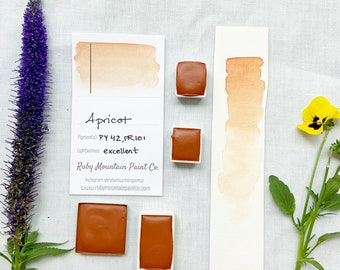 Apricot. Half pan, full pan or bottle cap of handmade watercolor paint
