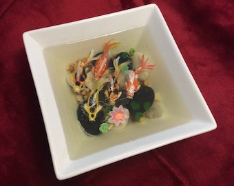Miniature koi pond: 5 mixed koi