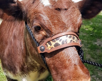 Cattle Rope Halter with Leather Nose Strap with Leopard Print for Livestock Showing Heifers, Steers or on the Farm