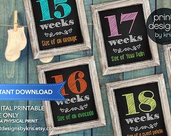 Weekly Pregnancy Sign - Week by Week Belly Sign - Week by Week Pregnancy Sign - Instant Download - Photo Prop - Pregnancy Photo Prop