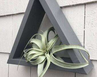 Grey Triangle Floating Shelf Airplant Display
