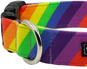 Gay Pride rainbow designer buckle dog collar with leash set option