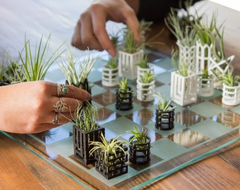 Air Plant Living Chess Set - Glass Board