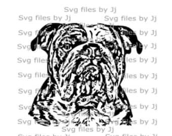 Realistic English Bulldog svg