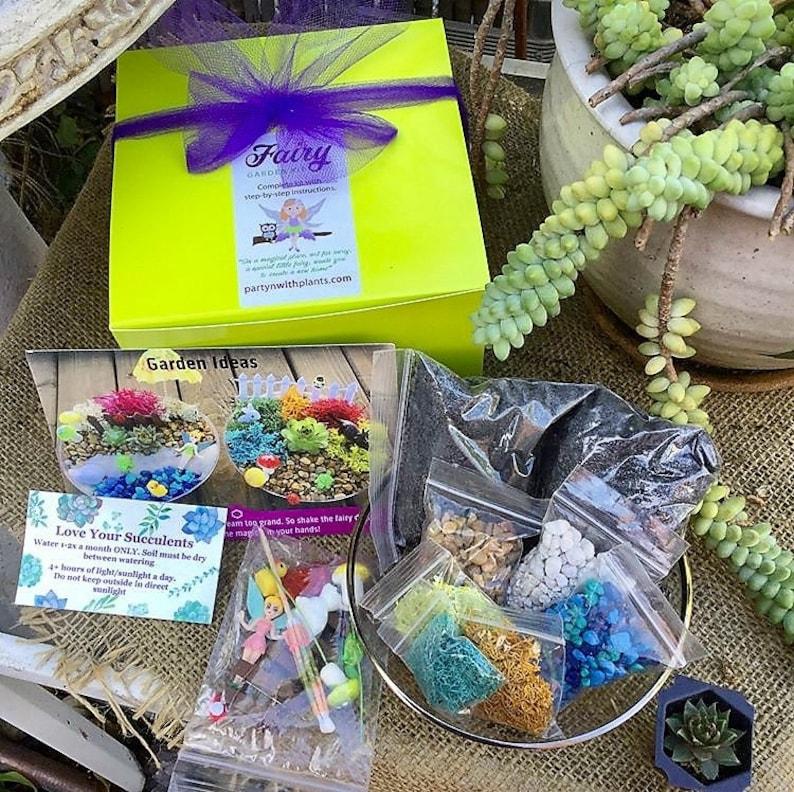 Fairy Garden Kit for Kids, Fairy Activity for kids, Birthday Gift Girls,  Succulent Kit, Fairy Craft Kit, Kids Fairy Garden, Fairy Supplies
