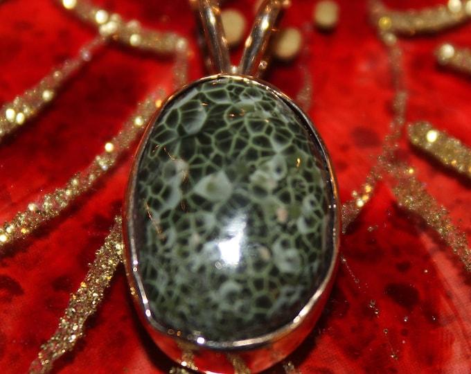 Chlorastrolite (Greenstone) 14 K GOLD Pendant: GGN-3