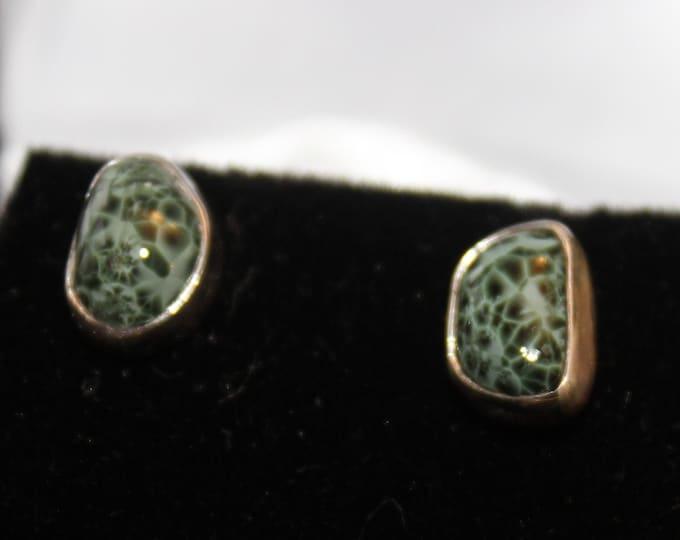 Chlorastrolite (Greenstone) Earrings GE-52