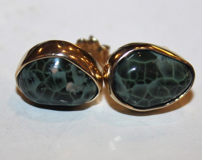 Chlorastrolite (Greenstone) 14K Gold Earrings GGE-2