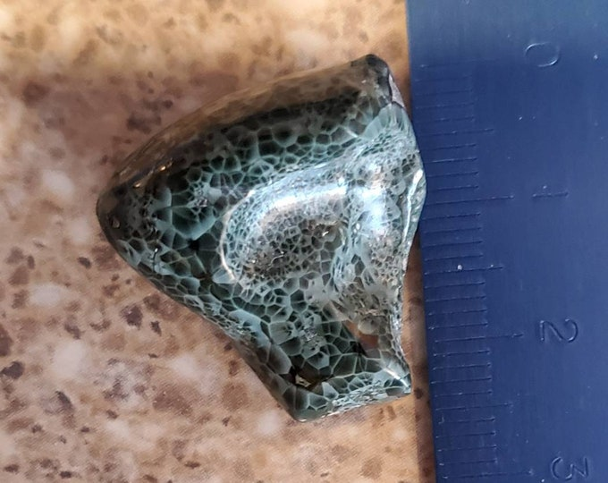 Michigan Gem Island  Greenstone from Isle Royal from the OLD COLLECTION