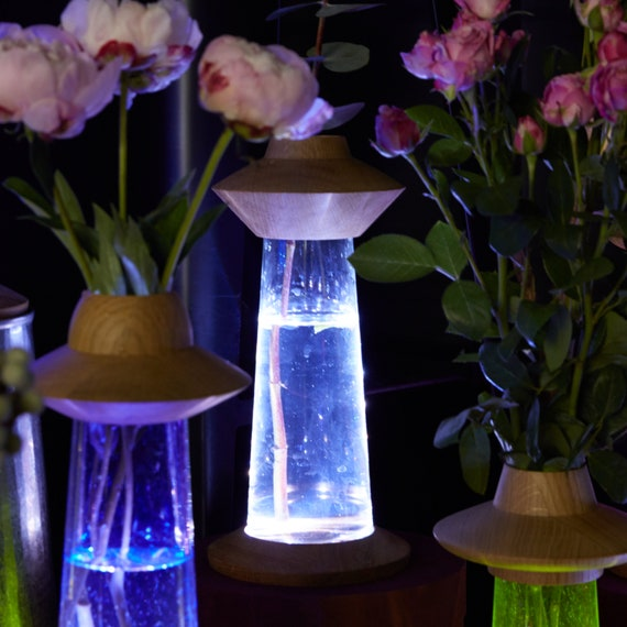 Modern Cordless UFO Flower Vase + Bedside LED Lamp of Clear Glass, Space Decor Lantern