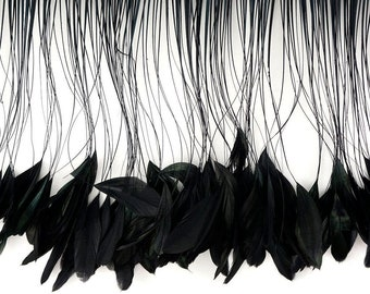 Stripped Coque Tail Feather Fringe - Dyed Black Iridescent Rooster Coque Tails for Millinery, Fine Arts, Costume and Fashion Design ZUCKER®