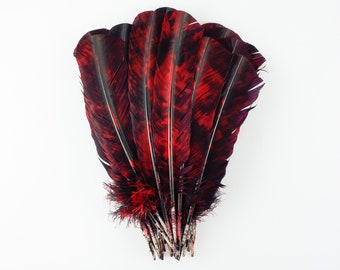 25pc/pkg Red & Black Tie-Dyed Turkey Quill Value Pack - For Arts and Crafts, Millinery, Carnival and Costume Design ZUCKER®