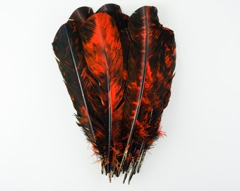 25pc/pkg Orange & Black Tie-Dyed Turkey Quill Value Pack - For Arts and Crafts, Millinery, Carnival and Costume Design ZUCKER®