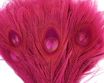 Peacock Feathers, 5 to 100 Pieces, SHOCKING Hot Pink Bleached Dyed Tails, Peacock Eye Feathers ZUCKER® USA Store