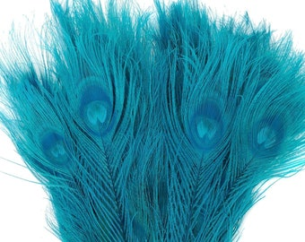 Peacock Feathers, 5 to 100 Pieces, Dark AQUA Bleached Dyed Tails, Peacock Eye Feathers ZUCKER® USA Store