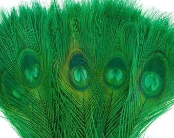 Peacock Feathers, 5 to 100 Pieces, KELLY Green Bleached Dyed Tails, Peacock Eye Feathers ZUCKER® USA Store