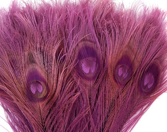 Peacock Feathers, 5 to 100 Pieces, PURPLE Bleached Dyed Tails, Peacock Eye Feathers ZUCKER® USA Store