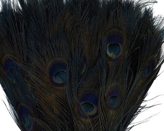 Peacock Feathers, 5 to 100 Pieces, BLACK Bleached Dyed Tails, Peacock Eye Feathers ZUCKER® Dyed and Sanitized in USA